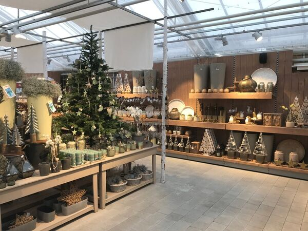 Visual Merchandising und Ladengestaltung Gartencenter